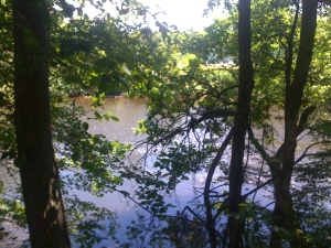 The Blackstone River through the trees from the Blackstone Valley bike path.